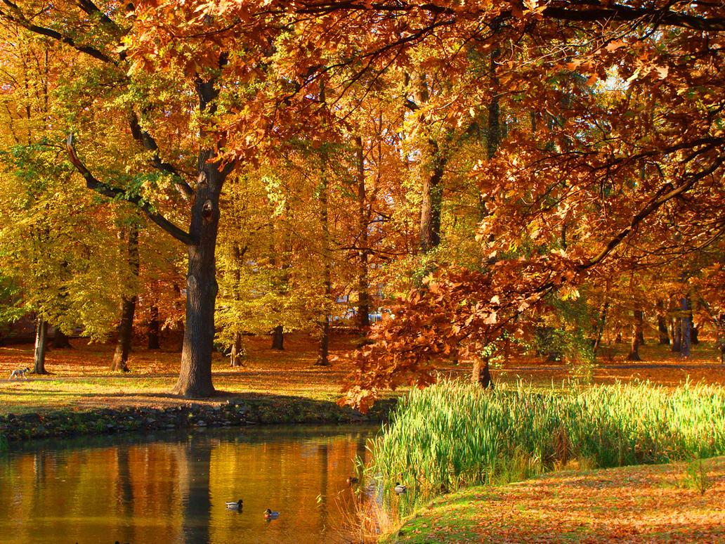 Golden Polish Autumn [2] by Luin-Tinuviel