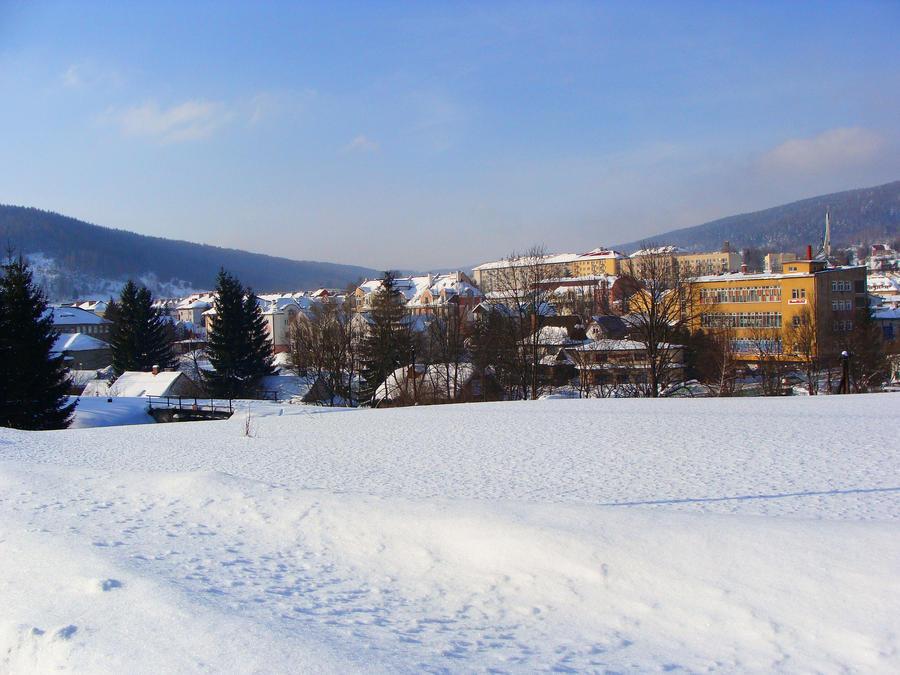 Winter in Ustrzyki Dolne [2] by Luin-Tinuviel