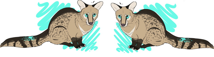Genet Adoptable by x-ChainAdopts-x