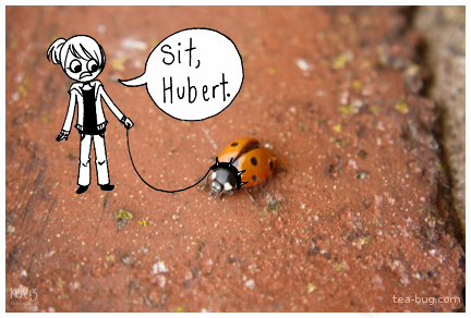 SIT, HUBERT by tea-bug