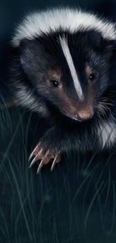 Skunky Painting by ToySkunk