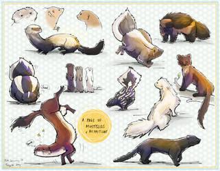 Mustelids+Mephitidae by ToySkunk