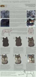 Tutorial: Painting Fur in PS by ToySkunk