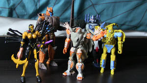 My Beast Wars Collection So Far