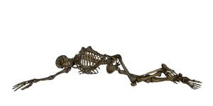 skeleton I by peroni68