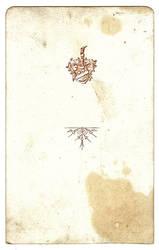 vintage card II by clandestine-stock