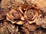 dried flowers IV