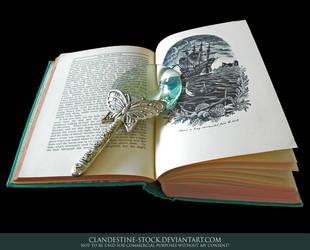 H. C. Andersen by clandestine-stock