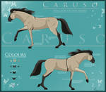 New Caruso Reference Sheet