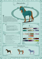 Anrastiollo Breed Sheet by Equinus