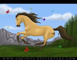 Heartward Bound by Equinus