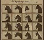 Equine Style Meme