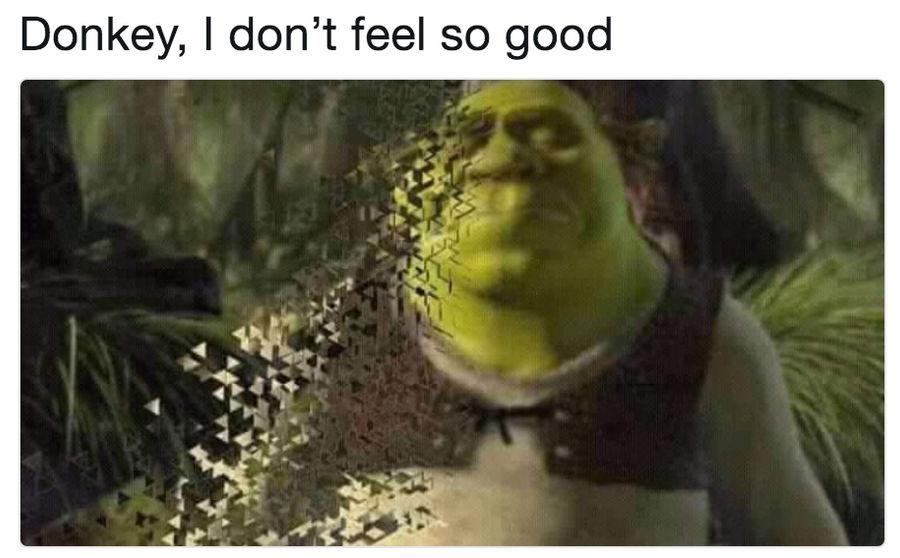 Shrek Don T Feel So Good By Delightfuldiamond7 On Deviantart
