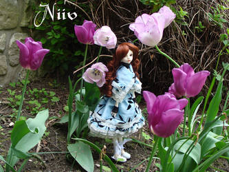 Alice in wonderland 1 by Sanveanne