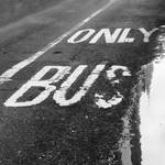 only bus