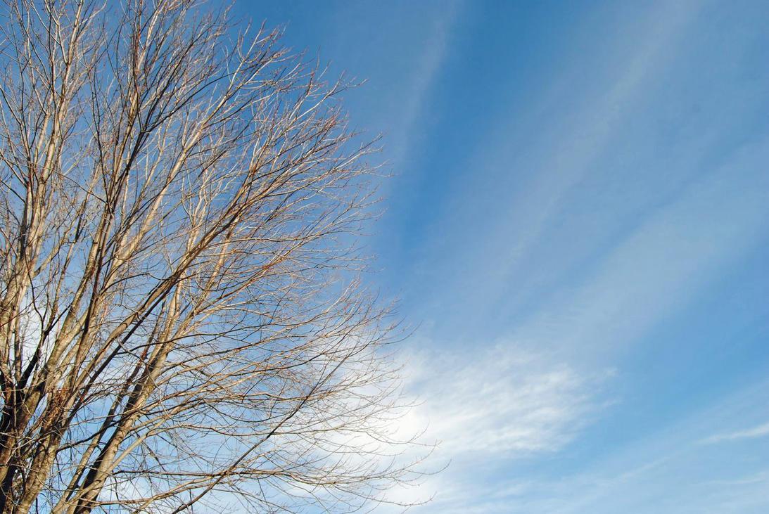 2012-03-11 Spring Skies by charliemarlowe