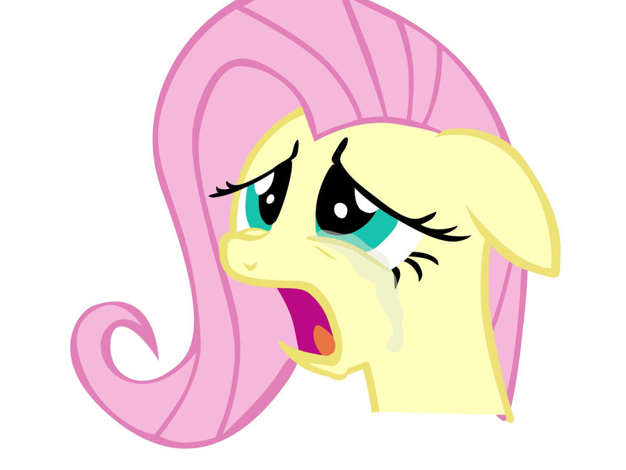 Don't cry Fluttershy by dowdlekid on DeviantArt