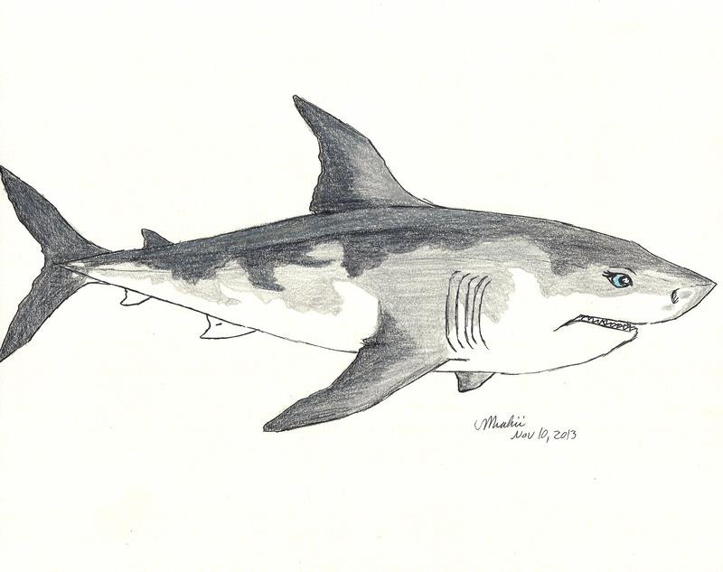 Shark oc by Miahii