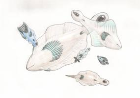 Sea Arrows by Biofauna25