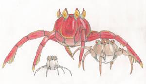 Radiocrabs by Biofauna25
