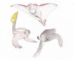 Gruccipoda