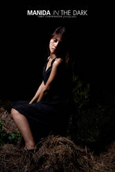 Manida in the Dark : 17