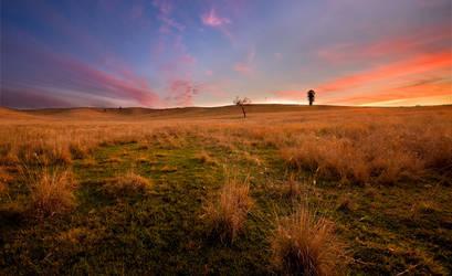 Sunset Over Kilcoy Farm Lands by eye-of-tom