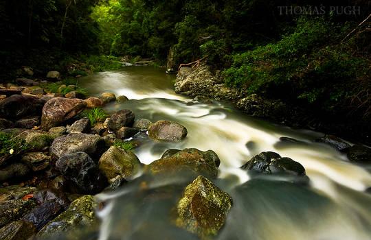 Stoney Creek II