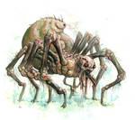 Arachnid Perversion