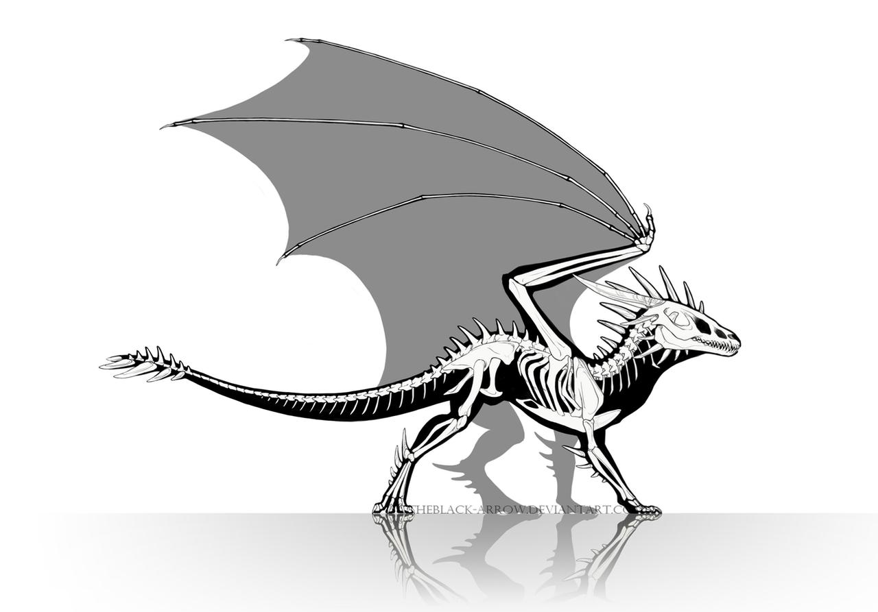 dragon anatomy skeleton by theblack arrow on deviantart clipart skeleton dog clip art skeleton free printable