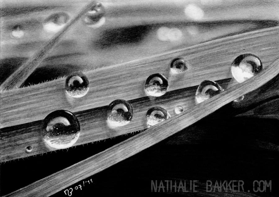 Water-drops by LilaeaBluecoat on DeviantArt