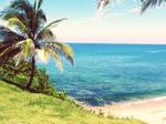 Surf Island