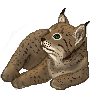 Lynx Icon by moonlightmemries