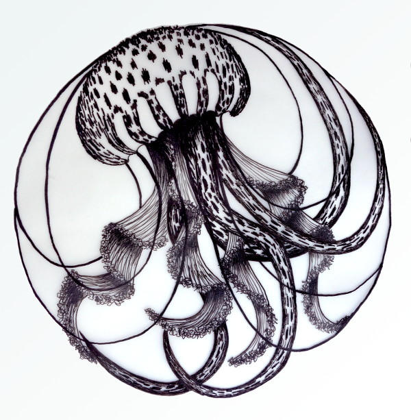 Inktober - jellyfish by l-Zoopy-l