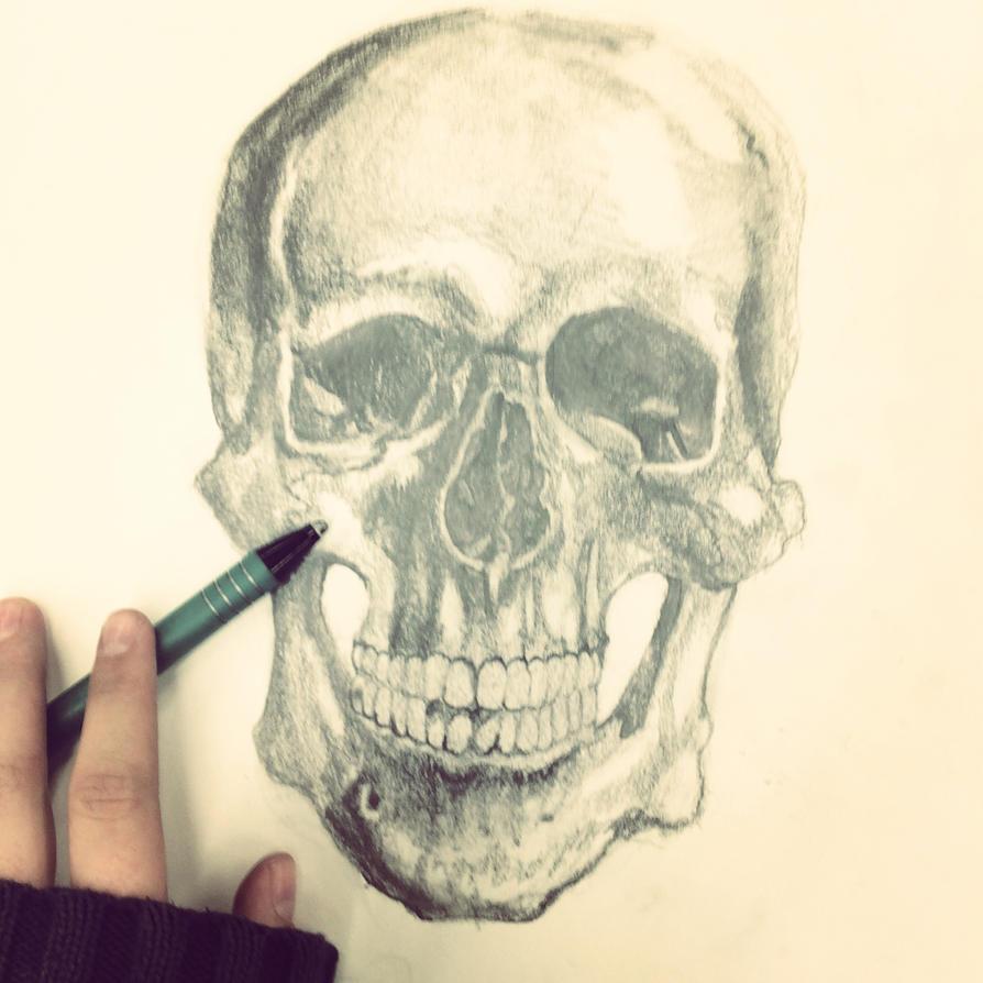 skully bones by i832muffins