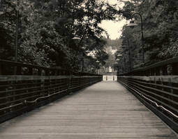 Walk Bridge by FanFrye24