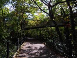 Follow the Trail by FanFrye24