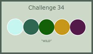 2013 August Challenge