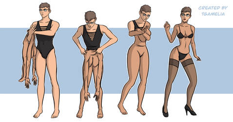 Bodysuit Sequence Commission