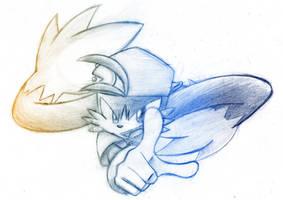 Klonoa of the Wind by SonicSpeedz