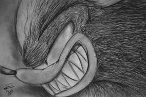Werehog by SonicSpeedz