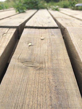 Wooden plank concept