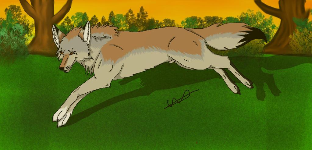 Art request: Pirk by ilovewolfsxxx