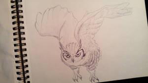 Owl by anythingLDA