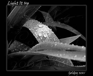 Light It Up by Goldey