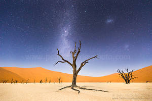 A Night at Deadvlei by RandomTechie27