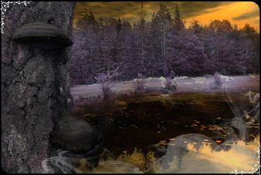fairytale by Kristbane