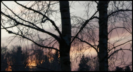 winterskies 1 by Kristbane