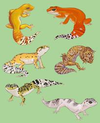 Gecko Stickies by kasaiwolf401