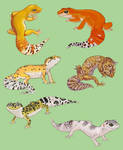 Gecko Stickies